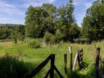 Wandelen in de natuur in de groene omgeving van Eyndevelde in het Duivenbos