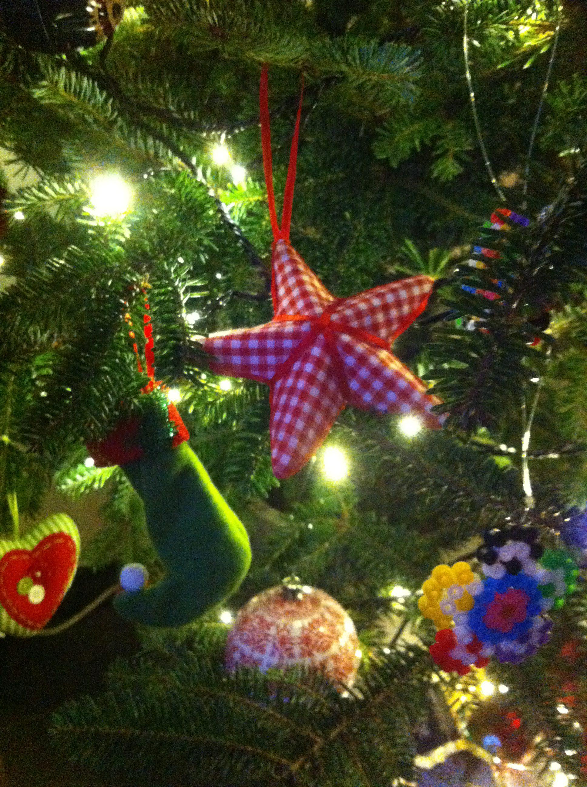 Eyndevelde kerstmis Vlaamse Ardennen