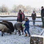 Eyndevelde vakantiewoningen Vlaamse Ardennen weekend weg met de familie in de sneeuw