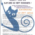 Nacht van de katjes in het donker in Sint-Lievens-Esse