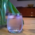 Gin tonic weekend in jurgen's whiskyhuis dicht bij Eyndevelde